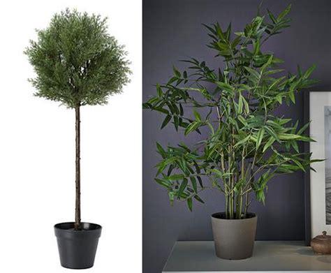 Las plantas artificiales Ikea son baratas, bonitas y ...
