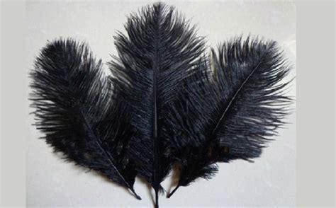 Las plumas del avestruz, en judeoespañol, desde el ...
