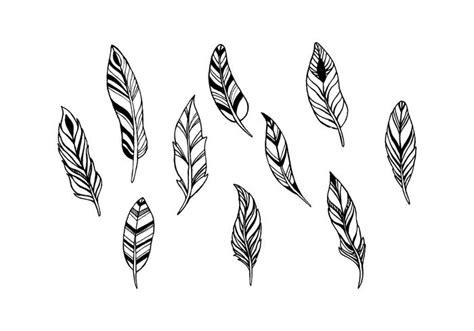 Las plumas libres del vector   Descargue Gráficos y ...