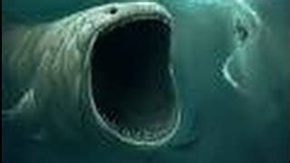 Le triangle des Bermudes - documentaire paranormal - YouTube
