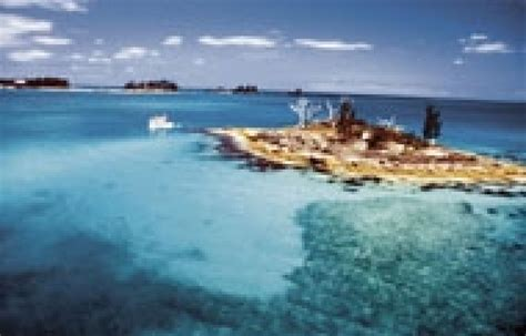 Les Bermudes - De l'autre côté du triangle | Le Devoir