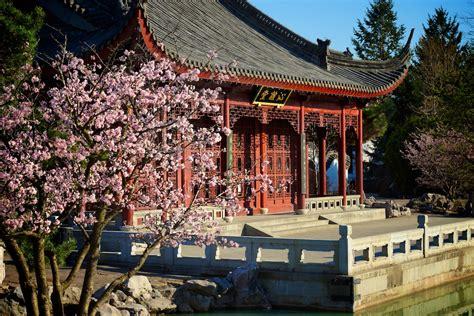 Les Magnolias du Jardin Japonais au Jardin botanique de ...