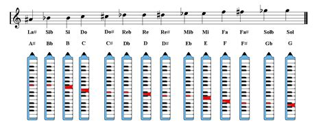 List of Synonyms and Antonyms of the Word: melodica notes
