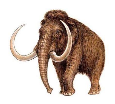 Lista: Animales prehistóricos increíbles y extraños