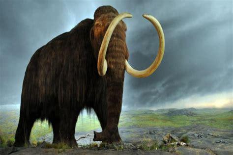 Lista: Los animales ya extinguidos más impresionantes