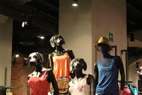 """¿Llamarías a una marca de moda """"Cuidado con el Perro ..."""