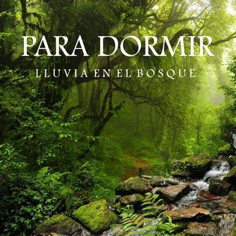 Lluvia en el Bosque   Para Dormir – Télécharger et écouter ...