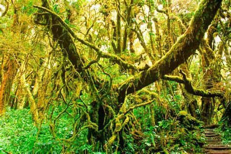 Los 10 parques donde vivir Costa Rica