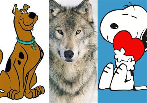 Los 30 Perros Más Famosos de la Historia - Lifeder