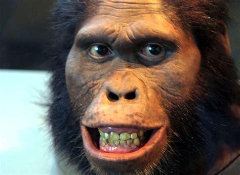 Los 7 monos más mórbidos de google - Taringa!