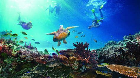 Los arrecifes más impresionantes del mundo