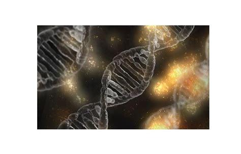 Los diez descubrimientos científicos más relevantes del ...