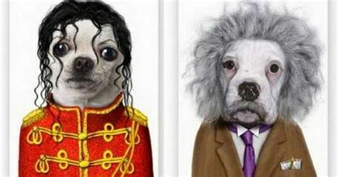 Los perros mas famosos de la historia. ~ LoQuieroLoCompro.com