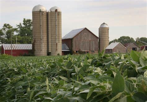 Los precios agrícolas bajan en la bolsa de Chicago
