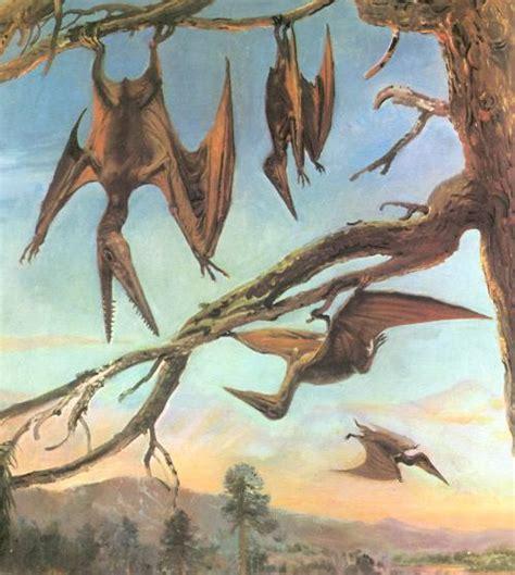 Los pterodáctilos no podían volar | Esencia 21 · Blog