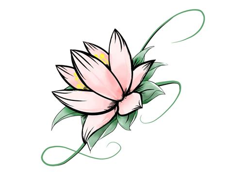 Lotus Flower Images Drawings | www.imgkid.com   The Image ...