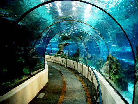 L'aquàrium de Barcelona – Tips en informatie over Barcelona