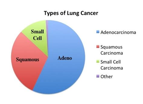 Lung cancer Classification and Incidence - Moose and Doc