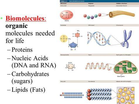 Macromolecules in Biology (also known as biomolecules ...