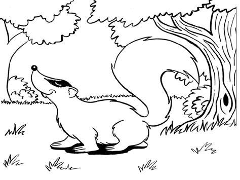 Maestra de Primaria: Dibujos de animales salvajes para ...