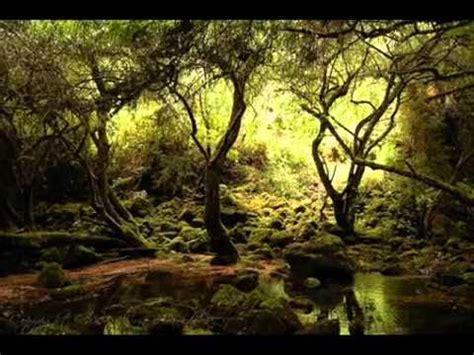 Mago de OZ  El Espiritu del Bosque  Cover    YouTube