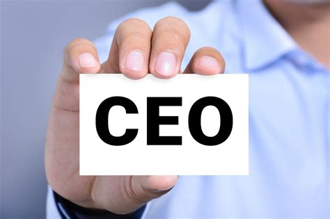 Making the Transition From Entrepreneur to CEO ...