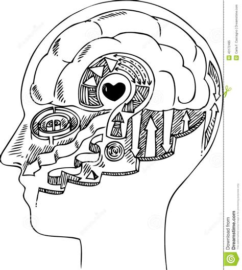 Man Profile With Brain And Heart Stock Vector - Image ...