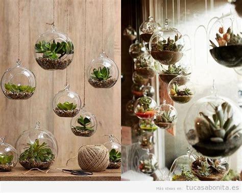 Maneras de decorar una casa con suculentas, unas plantas ...