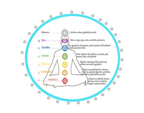Manshant Kaur Kundalini Yoga: EL YOGA Y LAS GLÁNDULAS.