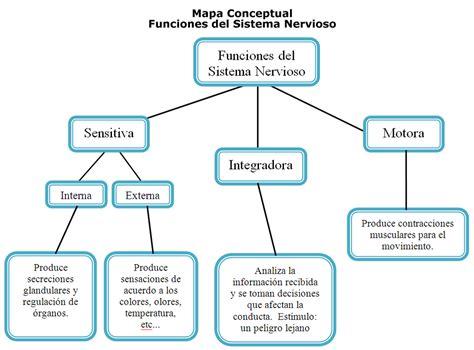 Mapa Conceptual Funcioness del Sistema Nervioso