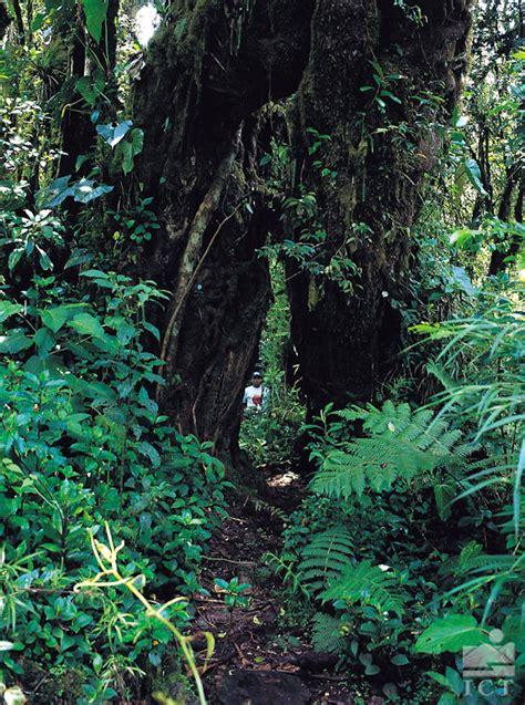 Mapa físico de Costa Rica – Guías Costa Rica