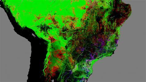 Mapa satelital desnuda la brutal deforestación - Taringa!