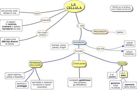MAPPE per la SCUOLA: LA CELLULA, EUCARIOTA e PROCARIOTA