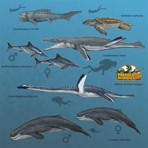 Marine Animals Designs! | Prehistoric Kingdom ...