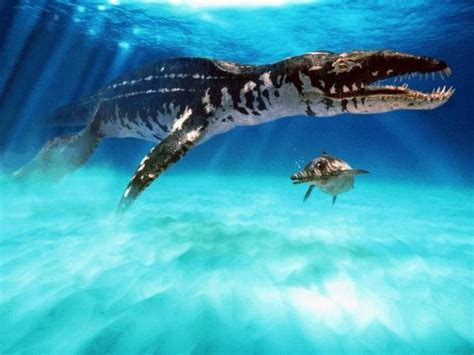 Marine Prehistoric Animals   Fun Facts and Pictures