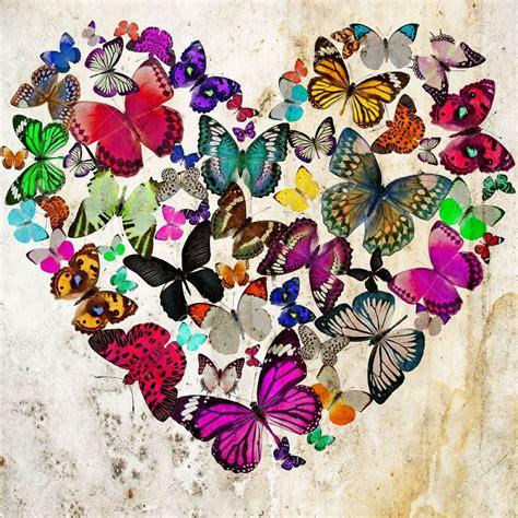 Mariposa-simbolo-del-amor-2016 - Esoterismos.com