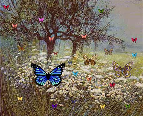 Mariposas en movimiento - Imagui
