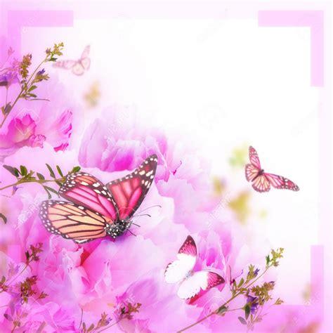 Mariposas Gratis Para Descargar Rosadas | Imágenes de ...