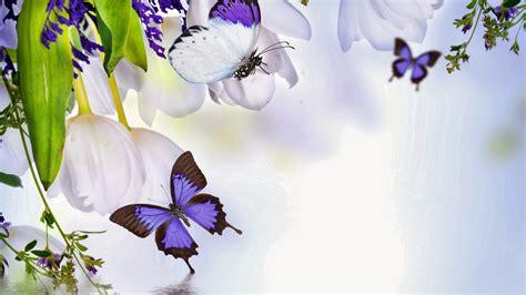Mariposas y Flores de Colores | Fotos e Imágenes en FOTOBLOG X
