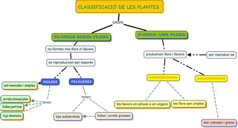 Marta plantes