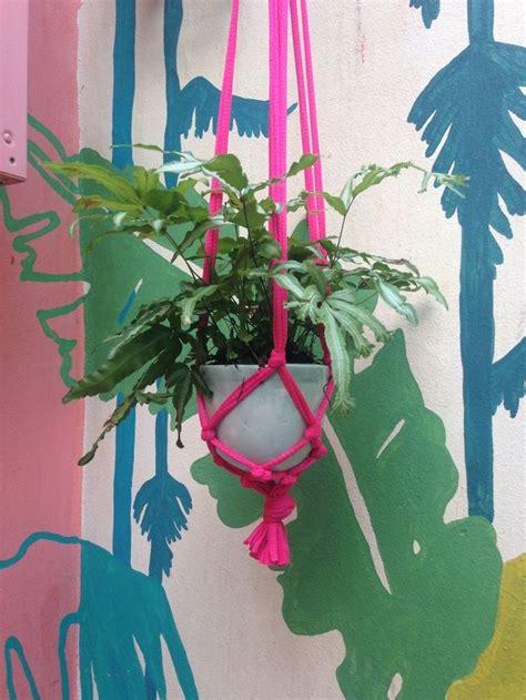 Más de 1000 ideas sobre Comprar Plantas Online en Pinterest