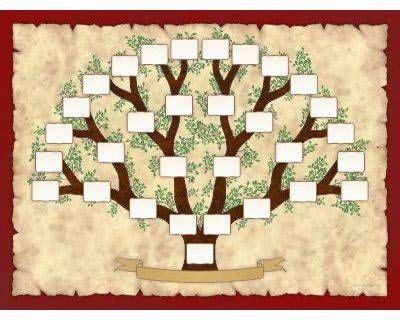 Más de 20 ideas increíbles sobre Plantillas de árbol ...