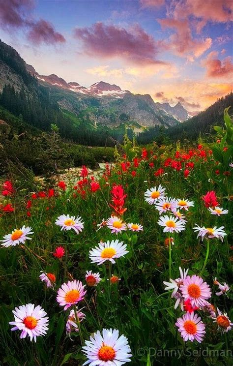 Más de 25 ideas increíbles sobre El arte paisajista en ...