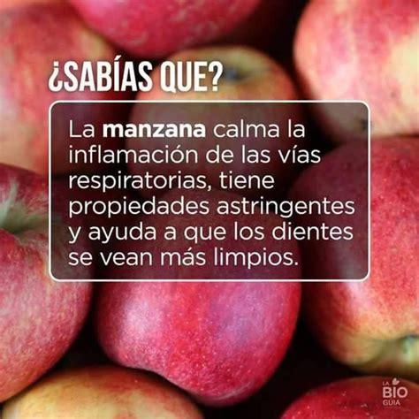 Más de 25 ideas increíbles sobre Fruta fresca en Pinterest ...