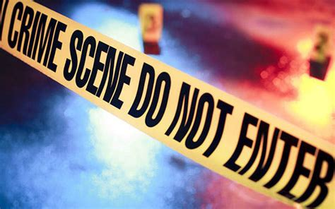 Máster online en Criminología - Aprendum