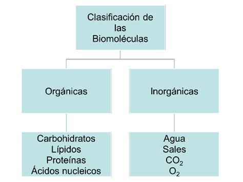 Materia y biomoléculas - Monografias.com