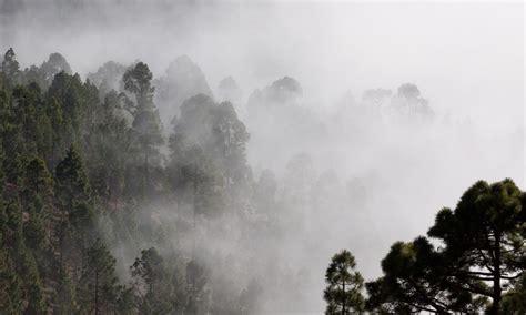 Medio Ambiente - Últimas noticias sobre Medio Ambiente