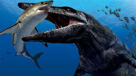 Megalodon Killers   Meet Predator X!   YouTube