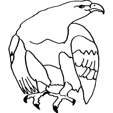 Mejorde Animales Omnivoros Dibujos Para Colorear
