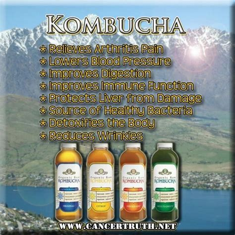 Mejores 286 imágenes de Kombucha Tea, Drink it! en ...